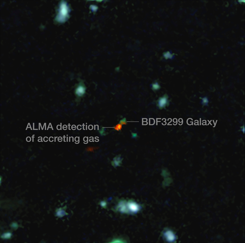 This view is a combination of images from ALMA and the Very Large Telescope. The central object is a very distant galaxy, labelled BDF 3299, which is seen when the universe was less than 800 million years old. The bright red cloud just to the lower left is the ALMA detection of a vast cloud of material that is in the process of assembling the very young galaxy. Image credit: ESO/R. Maiolino.
