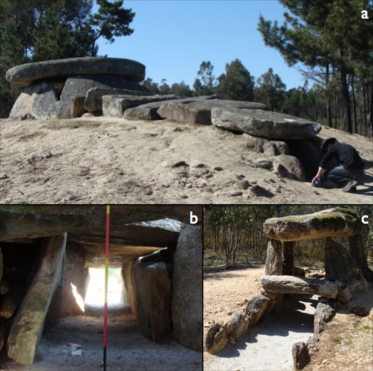 Photographs of the megalithic cluster of Carregal do Sal: a) Dolmen da Orca, a typical dolmenic structure in western Iberia; b) view of the passage and entrance while standing within the dolmen's chamber: the 'window of visibility'; c) Orca de Santo Tisco, a dolmen with a much smaller passage or corridor. Click the montage for a larger version. Image credit: F. Silva.