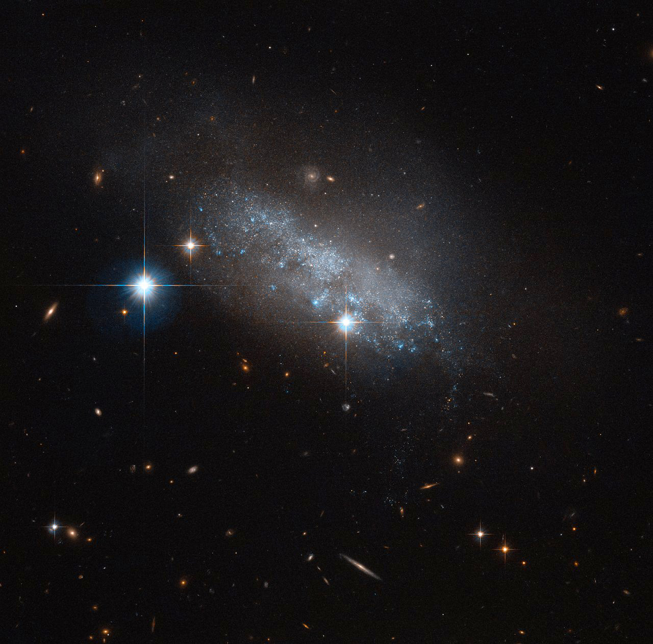 IC3583 is a magnitude +13 irregular galaxy located 30million light-years away in the constellation of Virgo close to the border with Coma Berenices. IC3583 is thought to be gravitationally interacting with one of its neighbours, the spiral Messier90. Note that the backdrop to IC3583 is strewn with large numbers of more distant galaxies of the Virgo Cluster. Image credit: ESA/Hubble & NASA.